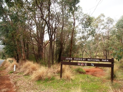 Dogs Allowed In National Parks Wa